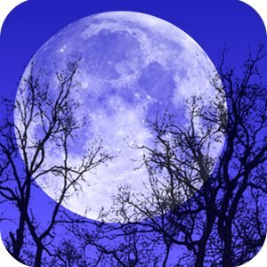 Astrología Celta: Significado del Zodíaco Druida