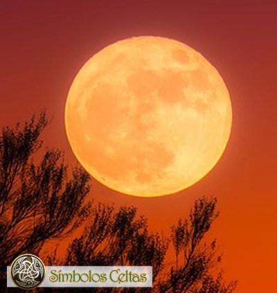 Astrología Celta: Zodíaco Druida (Año Lunar)