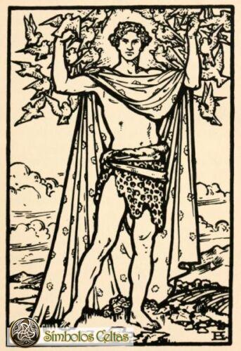 Dios Celta Aengus