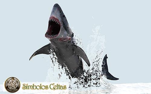 El tatuaje del tiburón maorí significa
