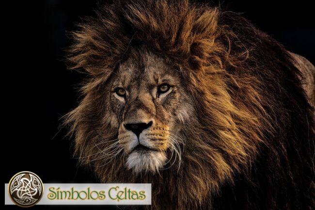Tótem animal León