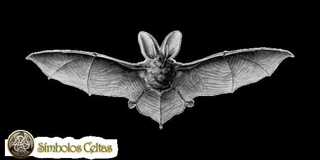 murciélago maya
